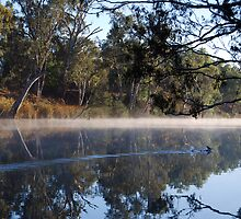Loddon mist by Greg Carrick