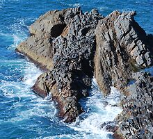 Forster Rocks - NSW Australia by Bev Woodman
