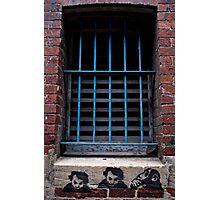 Bars Photographic Print