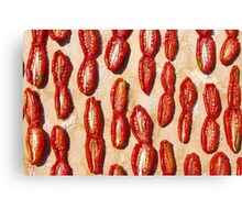Dried tomatoes Canvas Print