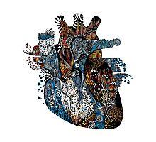 Heartonomy Photographic Print