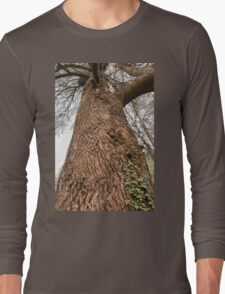 tree in the forest Long Sleeve T-Shirt