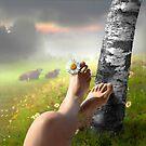 Country Life by Igor Zenin
