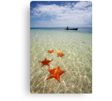 Paradise in Panama Canvas Print