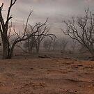 Same Dust Storm by John Shortt-Smith