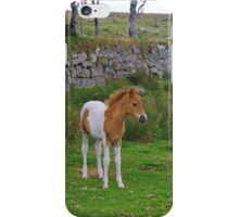 Pony Mare And Foal iPhone Case/Skin