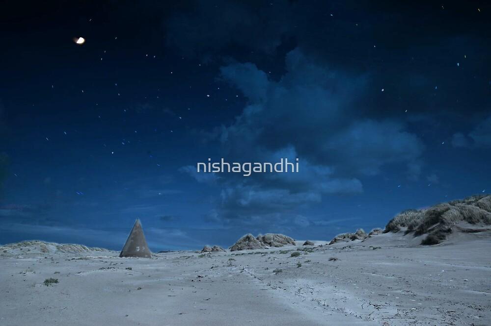 Night by nishagandhi