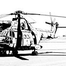 Aerospatiale SA-330H Puma Helicopter by RatManDude