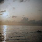 Whales after Dawn. by Goldenspirit