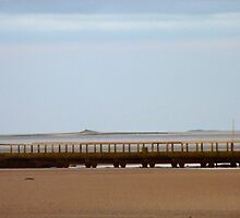 Holy Island Causeway at Low Tide by hoppityhops