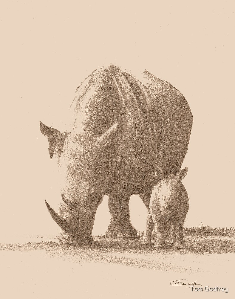 Mother and Baby White Rhino by Tom Godfrey