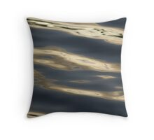 Aqua Pura Throw Pillow