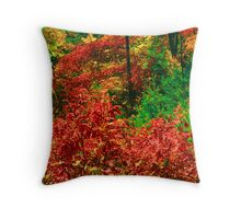 AUTUMN COLOR Throw Pillow