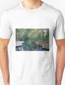 River of Beauty, Rock Springs T-Shirt