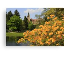 Castle behinda yellow curtain of flowers Canvas Print