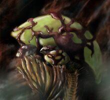 Fungus City:  Terren-Dir by dhlinder