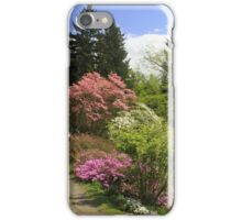 Walking through a dreamworld of colours iPhone Case/Skin