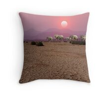 DAMARALAND SUNSET - NAMIBIA Throw Pillow
