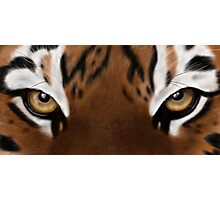 Tiger Eyes - Digital Painting Photographic Print