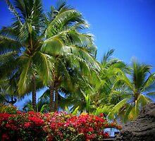 Blue Hawaii by Sean Jansen