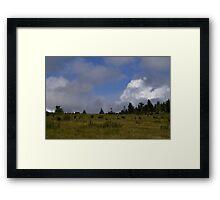 Grayson Highlands Framed Print