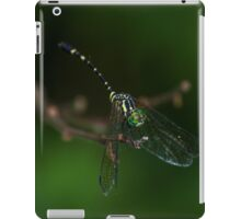 Neon Green Eye Liner (Dragonfly) iPad Case/Skin