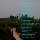 Arrábida Hills  by Wayne Cook