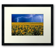 Storm on the Sunflower Field Horizon Framed Print