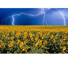 Storm on the Sunflower Field Horizon Photographic Print