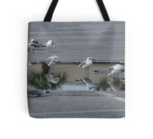 Out of Place Tote Bag