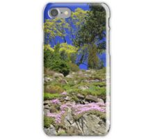 Spring Festival of Colours iPhone Case/Skin