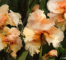 Peaches & Cream by Charmain Schuh