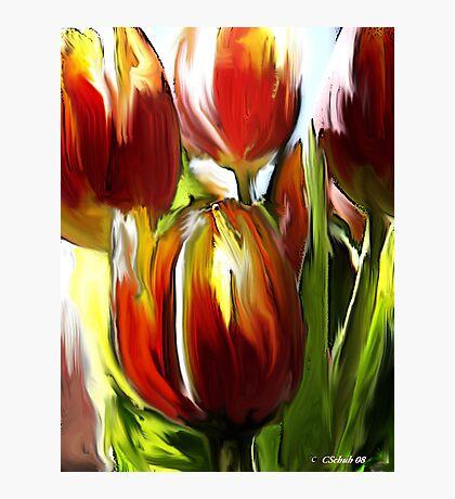 Tulip Brush Photographic Print