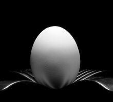 The Balanced Egg by jujushwa