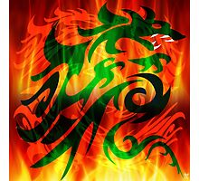 DRAGON IN FLAME Photographic Print