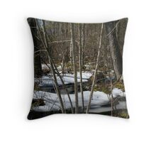 Late Winter, Chebacco Woods Throw Pillow