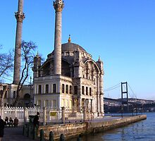 Mosque on the Bosphorus by pangea
