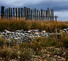Mormon Row, Fence Remnant by A.M. Ruttle
