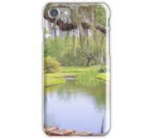 A Wondrous Place To Behold iPhone Case/Skin