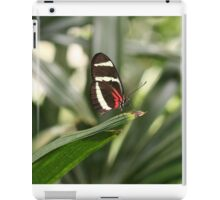 Tiny Butterfly With Striking Color iPad Case/Skin