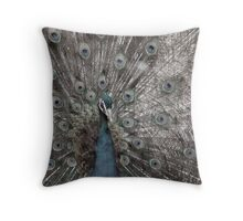 Antique Peacoque Throw Pillow