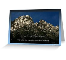Time To Stare Greeting Card