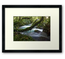 Where the Wild Things Are. Framed Print
