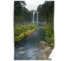 Whangarei Falls Poster