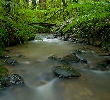 Beautiful New Zealand. by Michael Treloar