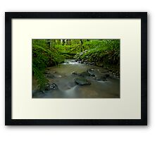 Beautiful New Zealand. Framed Print
