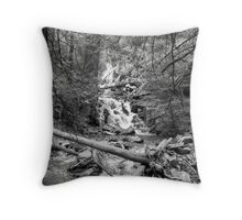 Coming Down Throw Pillow