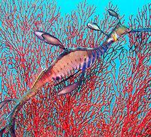 weedy sea dragon by Hilly