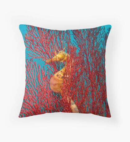 Beer Belly! Throw Pillow