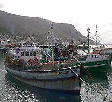 Row of crayfish trawlers by Riaan Hefer